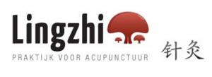 Ling Zhi Chinese praktijk voor acupunctuur Amsterdam